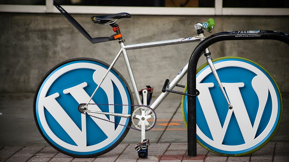 Why Do So Many Businesses Use WordPress Websites?